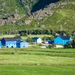 Traditional norwegian colorful houses ,Lofoten islands, Norway — Stock Photo #46166199