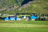Traditional norwegian colorful houses ,Lofoten islands, Norway — Stock Photo