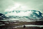 Veobrean glacier seen from Glittertind mountain (Jotunheimen Nat — Stock Photo