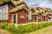 типичный норвежский дом с травой на крыше — Стоковое фото