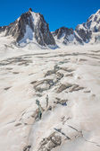 Massif de mont Blanc on the border of France and Italy. In the f — Stock Photo