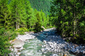 A stream trickling through rocks in the forest — Stock Photo