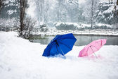 Two colored umbrellas in the snow — Stock Photo