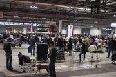 Personnes et chiens à l'exposition internationale de chiens de milan, Italie — Photo