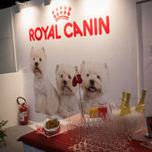 Detail of Royal Canin stand at the international dogs exhibition of Milan, Italy — Stock Photo