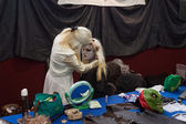 Cosplayers making up at Festival del Fumetto convention in Milan, Italy — Foto de Stock