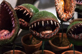 Carnivorous plants at Cartoomics 2014 in Milan, Italy — Stock Photo
