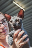 在米兰,意大利的 quattrozampeinfiera 只漂亮的猫 — 图库照片