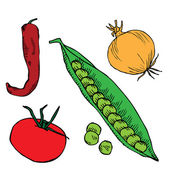 Onion, chilly pepper, tomato and pea — Stock Vector