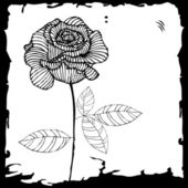 Rosa negra — Vector de stock