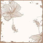 Hibiscus background — Stock Vector