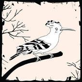 Illustration av gemensamma härfågel på grenen — Stockvektor