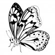 Black and white butterfly — Stock Vector