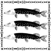 Freshwater pike — Stock Vector