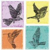 Fåglar samling — Stockvektor