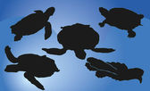Silhouettes of turtles — Stock Vector