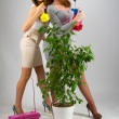 Portrait of sexy girls posing in studio with plants — Stock Photo