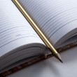Foto Stock: Diary with pencil