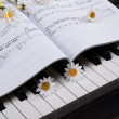 Стоковое фото: Piano keys and musical book and flower