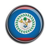 Flag icon web button belize — Stock Vector