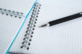 Pen on the checkered paper notebook — Stock Photo
