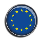 Flag icon web button european union — Stock Vector