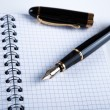 Stock Photo: Diary with fountain pen 11