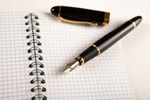 Diary with fountain pen 12 — Stock Photo