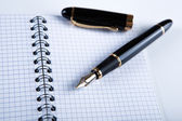 Diary with fountain pen 11 — Stock Photo