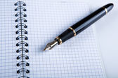 Diary with fountain pen 14 — Stock Photo