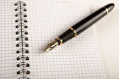 Diary with fountain pen 13 — Stock Photo