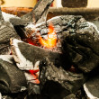 图库照片: Decaying coals for cooking and background