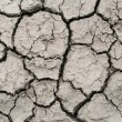 A area of dry land for a drought concept or metaphor. — Stock Photo