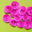 Pink paper rose isolated on green background — Stock Photo