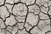 Une zone de terre ferme pour un concept de sécheresse ou de la métaphore. — Photo