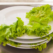 Stock Photo: Stack of Waste vegetable dishe
