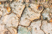 Dry cracked soil-rough grunge background — Stock Photo