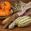 Fall Harvest — Stock Photo