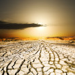 Sunset on ground dried by dryness — Stock Photo #16931723