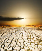 Sunset on the ground dried by dryness — Stock Photo