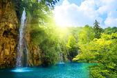 Waterfall in deep forest — Zdjęcie stockowe