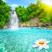 Waterfall, Plitvice lakes National Park, Croatia — Stock Photo