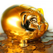 Money gold — Stock Photo #18701897
