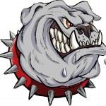 Furious bulldog — Stock Vector #34346071