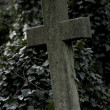 Stone cross in an overgrown cemetery - Stock Photo