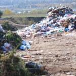 Urban Waste Dump Site — Stock Photo #35983761