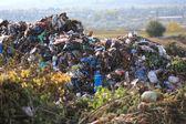 Urban Waste Dump Site — Stock Photo
