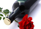 Bottle of wine and rose — Stock Photo
