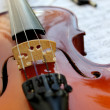 Violin and notes — Stock Photo #31868623