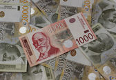 Serbian dinar — Foto Stock